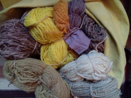 spinning and natural dyeing wool