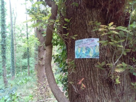 In defence of Marlhill Copse
