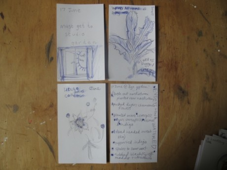 notes from the garden 6