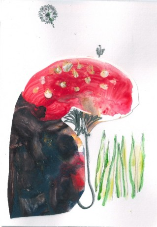 toadstool doodly paint
